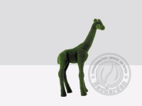 Топиари - Жираф маленький