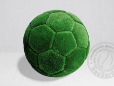 Топиари - Мяч