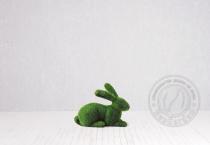 Топиар кролик