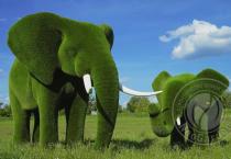 Садовая топиари слон и слонёнок